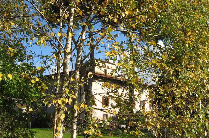 Gardening_season_autumn_villa_from_birch_corner_opt