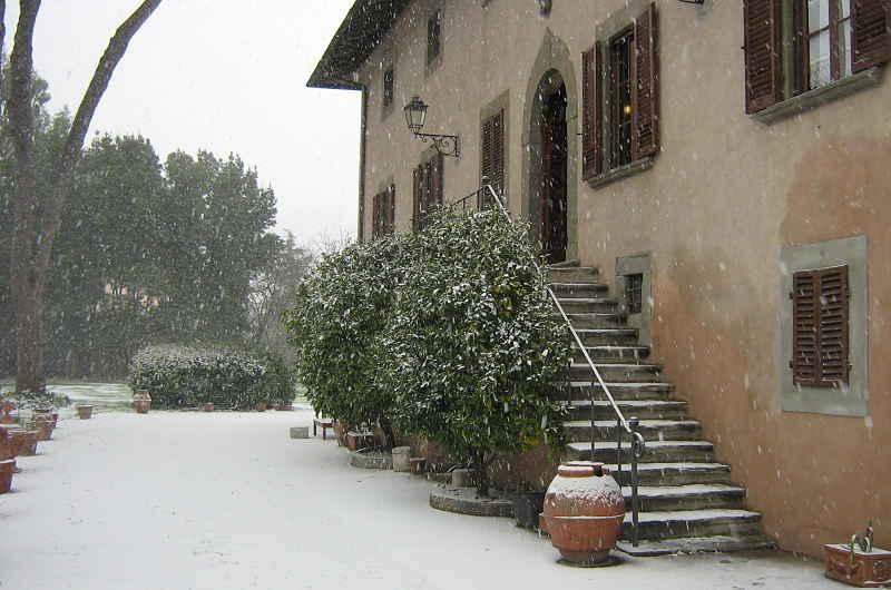 Gardening_season_winter_lommon_tree_under_snow_opt