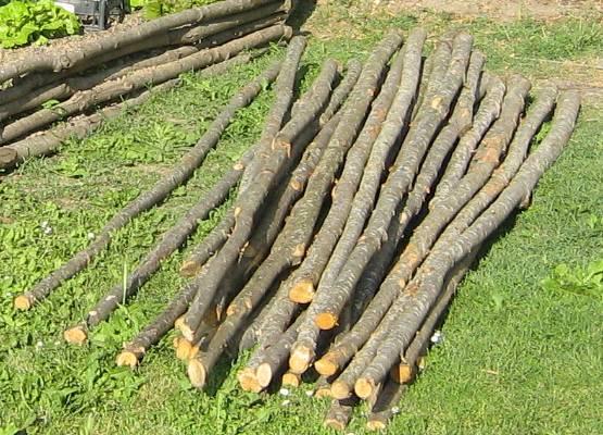 pali di castagno