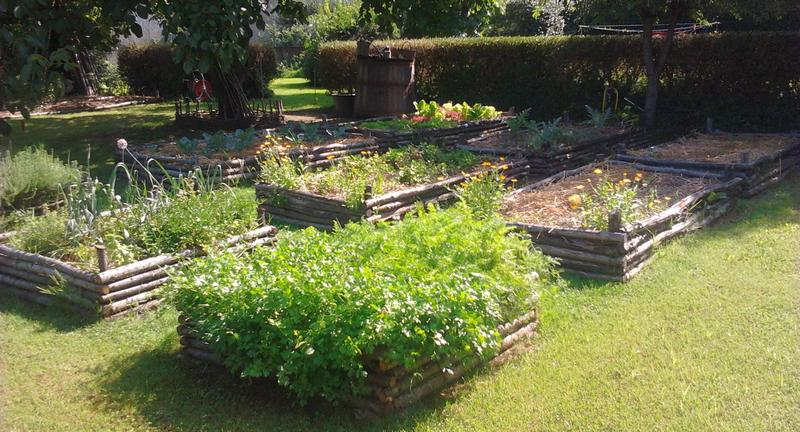Gardening_season_summer_vegetable_garden1_opt